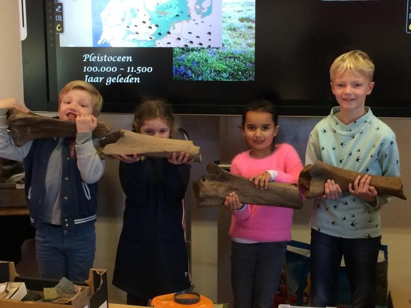 Bekijk het album Groep 4 Gastles over Dino's en Fossielen